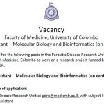 Research Assistant – Molecular Biology and Bioinformatics (contract basis)