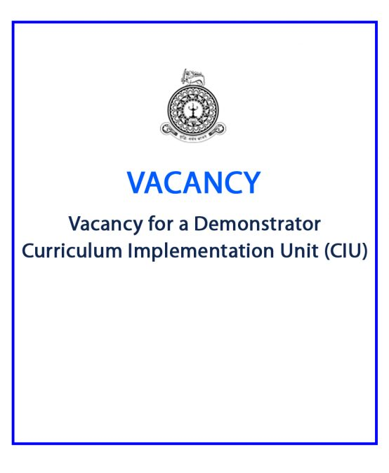 Vacancy for a Demonstrator – Curriculum Implementation Unit (CIU)
